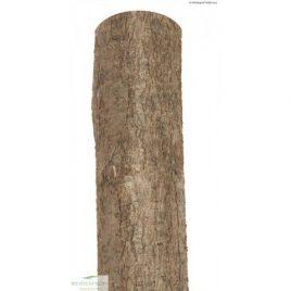 Holzpfosten Haselnuss rund, natur, Ø 7-9 x 200