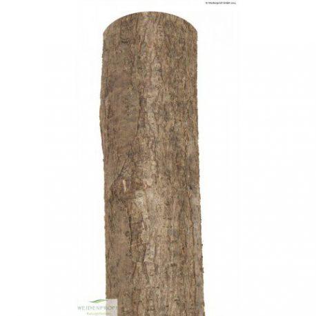Holzpfosten Haselnuss rund, natur, Ø 7-9 x 200 1